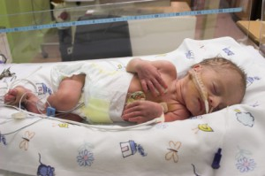 Premature baby sleeping in ICU only one day old